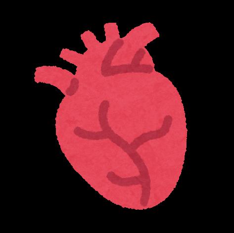 帝人、福井経編、大阪医大:心・血管修復パッチの治験開始。小児の成長に合わせ伸長(内資)